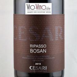 Gerardo Cesari - Valpolicella Ripasso Superiore BOSAN DOC 2015